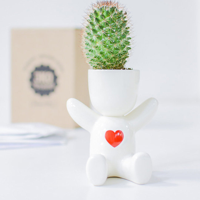 Подарок горшок с семенами 22